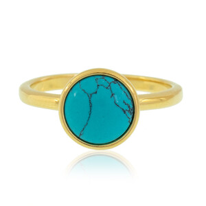 Turquoise Silver Ring (dagen) 1167YH