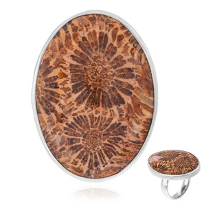 Petrified Coral Silver Ring 1257LN