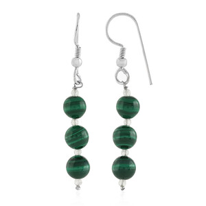 Malachite Silver Earrings 3124UL