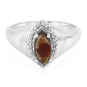 Ammolite Silver Ring 3666RS