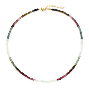 Fancy Tourmaline Silver Necklace 4257EA