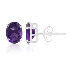 Zambian Amethyst Silver Earrings 5662NP