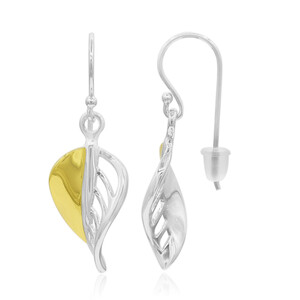 Silver Earrings 5905OE