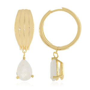 Rainbow Moonstone Silver Earrings 8964IP