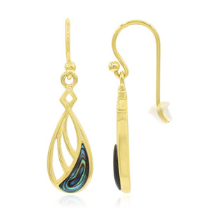 Abalone Shell Silver Earrings 8999JI