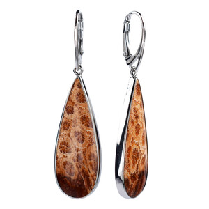 Petrified Coral Silver Earrings 9259VJ