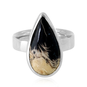Petrified Palm Wood Silver Ring 9412WX